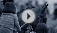 Longines presents Horse Racing 2014